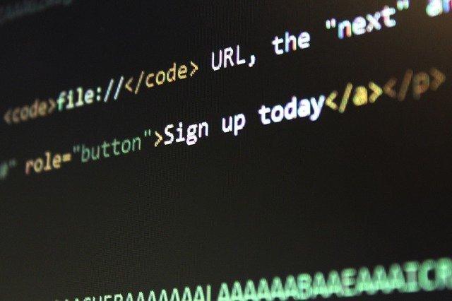 wordpress cms html code