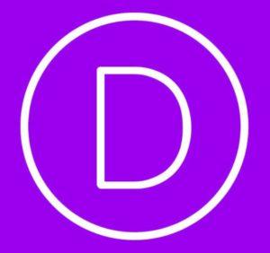 divi theme